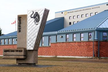 レイクヘッズ公立中学高校留学 / Lakehead Public Schools